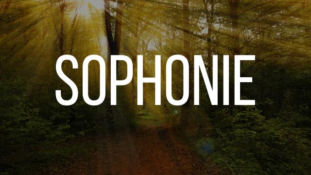 Sophonie