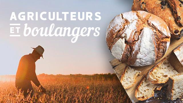 Agriculteurs et boulangers : Thierry et Cécile Hermeline à La Pérrière dans l'Orne