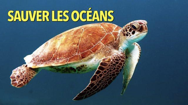 Sauver les océans