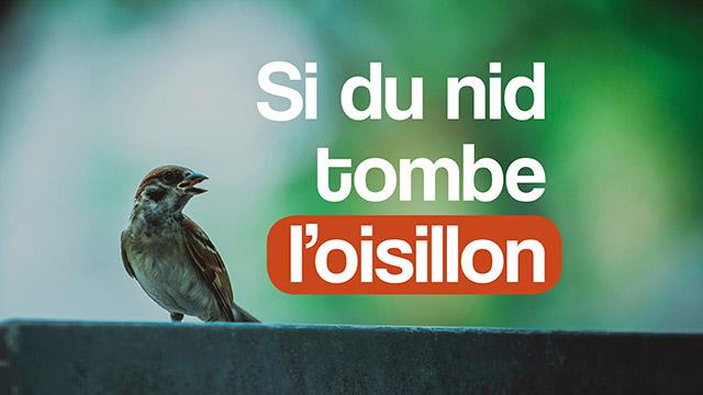 Si du nid tombe l'oisillon - Louange