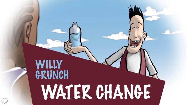 Willy Grunch : Water change - Alain Auderset